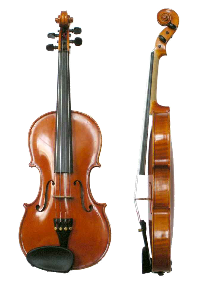 Front and side view of a violin